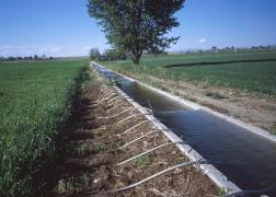 THE CONSTRUCTION OF IRRIGATION CANALS AND PONDS